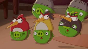 Angry Birds: Season 1: Double Take / Crash Test Piggies / Slappy-Go-Lucky / Sneezy Does It / Run Chuck Run / Rock On! / The Mirror / Superglue