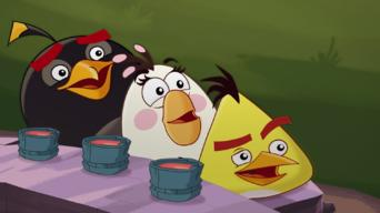 Angry Birds: Season 1: El Porkador! / Hiccups / The Butterfly Effect / Hambo / Bird Flu / The Prankster / Snooze / SuperPork